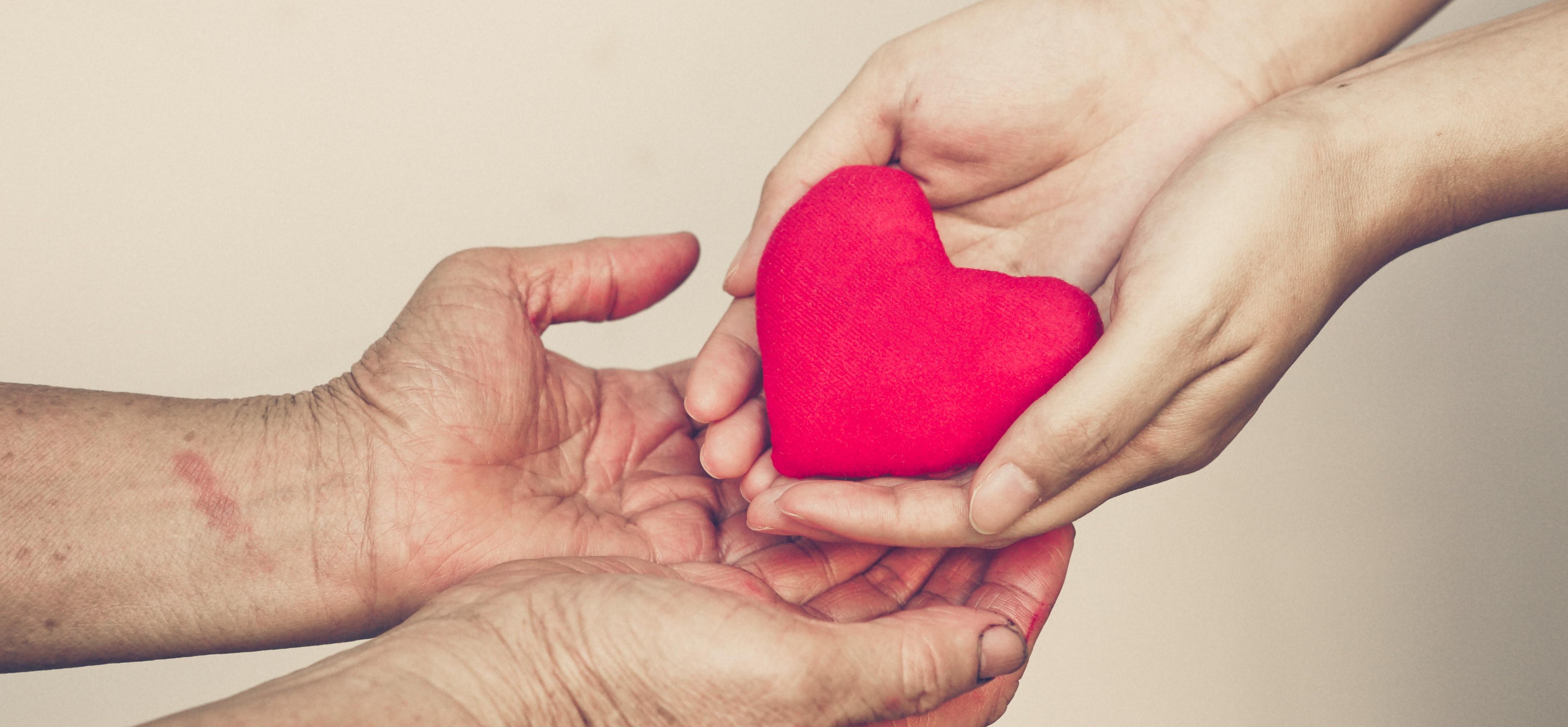 Empathy Margot Stern Strom Innovation Grant Facing History