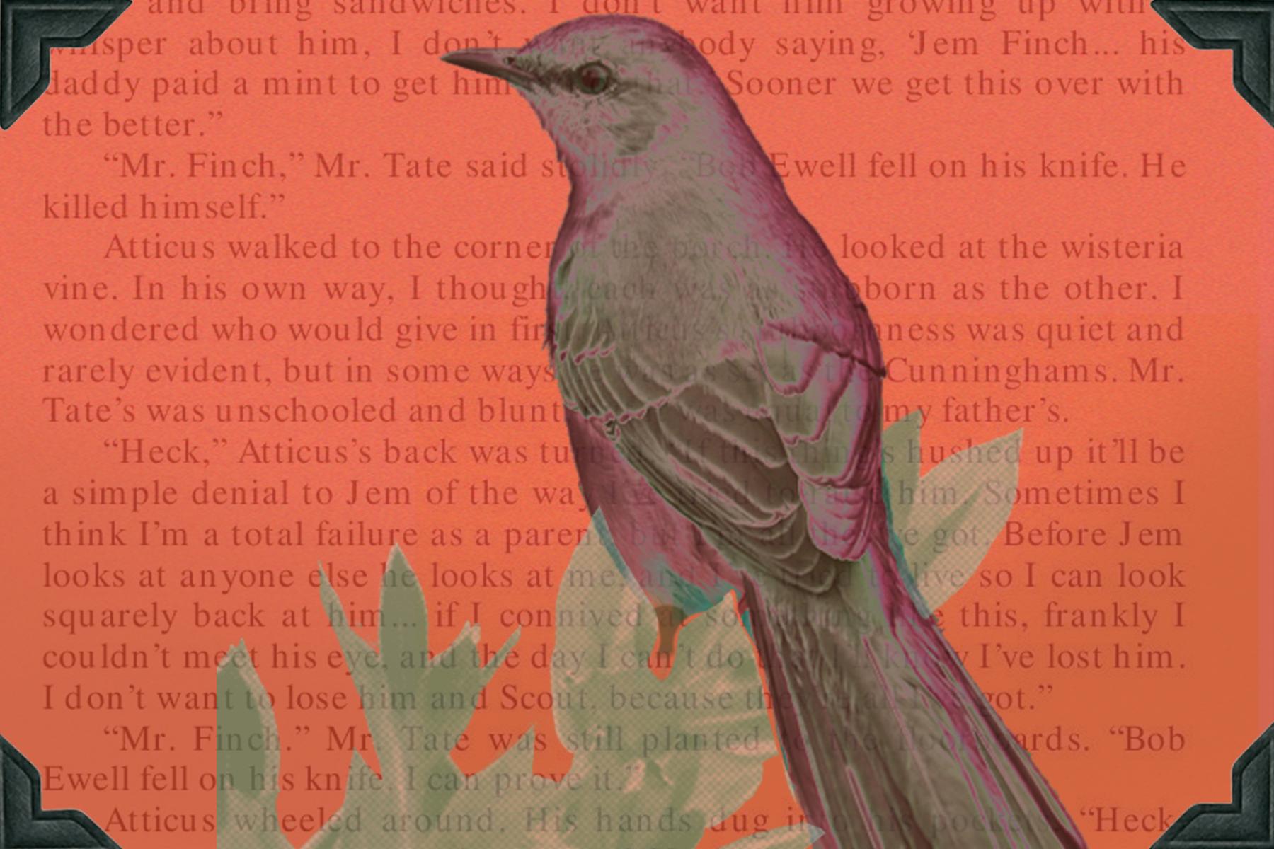 To Kill a Mockingbird  Facing History and Ourselves Teaching Mockingbird
