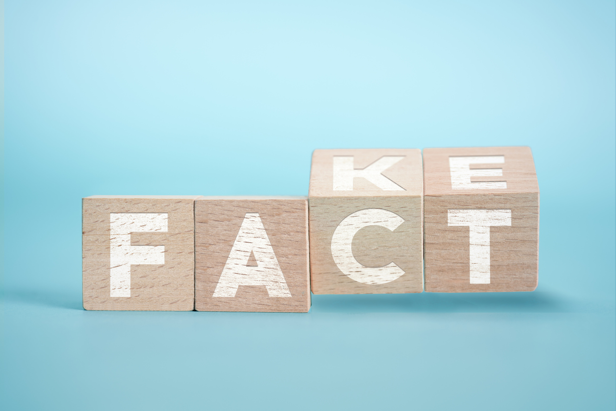 "Blocks displaying the words ""FACT"" and ""FAKE"""